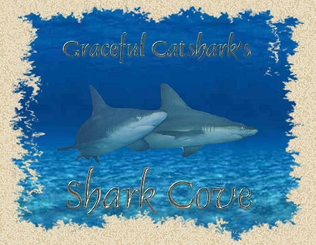 Two Gray Reef Sharks